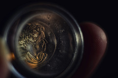 Dei Gratia Regina (Paul B0udreau) Tags: macro nikkor50mm18 photoshop canada ontario paulboudreauphotography niagara d5100 nikon nikond5100 raw layer fotodioxextensiontubes 7mm macromondays picktwo