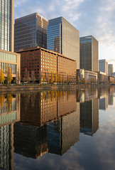 Mirror of a City (LowerThirdTierPhotography) Tags: d7200 tokyo japan chiyoda water reflection building buildings architecture city cityscape 東京 日本 秋 autumn tree