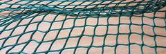 Net 2 (Gordon Brandly) Tags: netting green aqua geometriclines geometricart