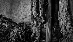 Mops (Greg Adams Photography) Tags: easternstatepenitentiary philly philadelphia forgotten old historic historical history blackandwhite detail bw colorblind mop mops pennsylvania jail prison penitentiary grain wooden handle hhsc2000 2016
