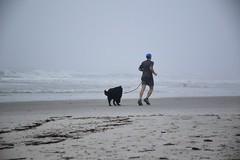 foggy_beach (1)