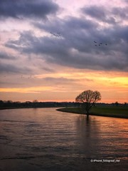 The river IJssel at Doesburg (iPhone Fotograaf) Tags: landscape evening sunset sun water winter iphone8plus dutch sky reflection doesburg