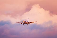 757 reasons not to. (Ross Dinsdale) Tags: boeing canon1dsmarkii 757 phoenixskyharborinternationalairport federalexpress n793fd fedex nikcollection boeing757 skyharbor canon phoenix sunset clouds