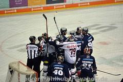 DSC_7387 (Sören Kohlhuber) Tags: eisbärenberlin dynamo eishockey red bull münchen del playoff