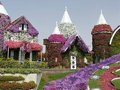 Dubai Miracle Garden (Carl Neufelder) Tags: miraclegarden flowers structures uae dubai garden unitedarabemirates