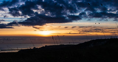 Christmas Eve Sunset Over Folkestone (BeerAndLoathing) Tags: 2018 december folkestone englandtrip england sunset uktrip cliffs whitecliffs birds canon kent sea sun silhouette 77d dramaticsky panorama trip clouds winter sky uk winter2018 englishchannel canoneos77d sigma18300mm