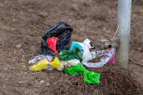 Nahaufnahme von achtlos auf den Waldboden geworfenem Plastikmüll