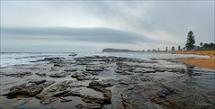Eel in the sky (JustAddVignette) Tags: australia beach clouds cloudy cloudysunrise collaroy dawn firstlight fog headland hightide landscapes newsouthwales northernbeaches ocean panorama rocks sand seascape seawater sky sunrise swell sydney water waves