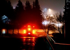 Lights in the night (Jane Olsen) Tags: car vehicle lights dark reflection streetlights fog trees road outdoor