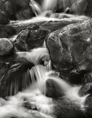 Bishop Creek Just Below Lake Sarina (fotographis) Tags: blackwhite blackandwhite linhof linhoftechnika 125mmfujinonw fuji fujiacros 4x5 largeformat bishopca sierramountains bishopcreek creek stream water flow waterfall