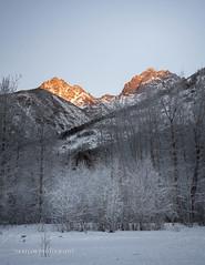 Twin Peaks (Traylor Photography) Tags: alaska hoarfrost landscape winter eklutnalake mountiains anchorage sunrise frozen chugiak unitedstatesofamerica us