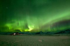 Northern Lights (jasty78) Tags: northernlights auroraborealis aurora night stars snow liljaguesthouse road hofn iceland nikond810 samyang14mmf28 14mm
