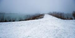 The unknown episode awaits (Ingeborg Ruyken) Tags: sneeuw morning empel natuurfotografie mist 500pxs instagram fog ochtend koornwaard flickr snow