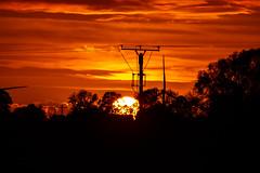 Sunset (betadecay2000) Tags: sunset sun abendrot evening blue hour rood red rot roughe pink himmel sky heaven sonnenuntergang abendstimmung german germany deutsch deutschland niemcy münsterland dämmerung everything scenery baum