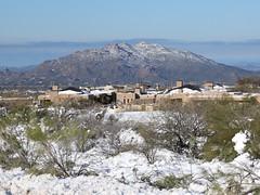black-mountain-1902230100 (nagerfran) Tags: cactus winter desert storm snow cold freeze arizona scottsdale tontonationalforest
