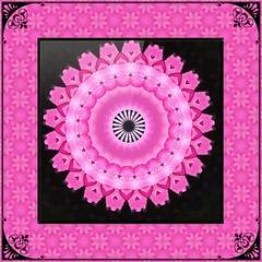 Pink Mandala in Pink Tessellation with Black Accents (Crystal Writer) Tags: kaleidoscope kaleidescope kaleidoscopic kalidascope calidascope kaleidoscopesonly design pattern light color colour colorful colourful image picture creation creative creativity beauty original unique geometric mandala kaleidoscopelime androidapp android app cellphoneapp photoedits samsunggalaxynote galaxynote smartphoneapp madewithaphoneapp crystal crystalamurray crystalmurray crystalwriter christianwriter christian writer kvad kvadphotostudiopro photostudiopro framed borderedandframed borderedframed border bordered filter photofilter texture layer effect photoeffect tessellation kaleidoscopetessellation tile tiled pink hotpink bright brightpink black cellphone cellphonecamera cameraphone samsung samsunggalaxy galaxynote5 androidcamera