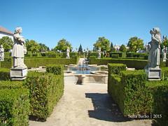 Jardim do Paço Episcopal, Castelo Branco 09 (Sofia Barão) Tags: portugal beira baixa jardim garden