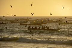 Fishing boats (s_andreja) Tags: mauritania nouakchott sunset sea ocean people boat fishermen sky water bird fishing portdepêche