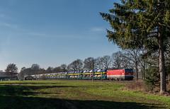 Umleiterverkehr VIII (Klaus Z.) Tags: eisenbahn kbs 390 vreschenbokel br 1144 güterzug autozug öbb altmann winter