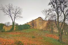 Blankenburg Castle (Mike Bonitz) Tags: deutschland germany sachsenanhalt saxonyanhalt blankenburg harz harzmountains schloss burg castle park bäume trees mauer wall instagram huaweip20 architektur architecture