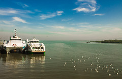 """""""Tethered but rearing to Go"""" (Shourav3820) Tags: ngc sky blue water landscape naf teknaf bangladesh nature beautiful travel chittagong stmartin canon clouds birds seagulls trees jetty ferry reflection"""
