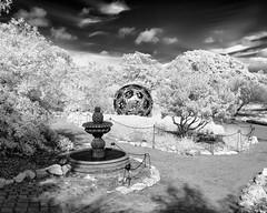 From a certain point of view (rikioscamera) Tags: 590nm ir d7000 infrared lifepixel lightroom nikon southcoastbotanicgarden silverefexpro blackandwhite bw monochrome fountain garden ranchopalosverdes sculpture trees plants sky