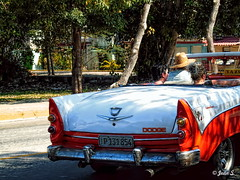 Visite guidée (Jean S..) Tags: old ancient car people ride orange white street trees cuba varadero taxi