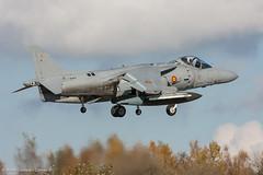 08S5TLP114 (Bruno D / Comao.fr) Tags: 01914 2008 9escuadrilla armada eav8b espagne florennes matador tlp va1b24