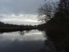 Rippled reflection (Phil Gayton) Tags: water ripple grass tree sky cloud river dart totnes devon uk