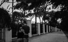 Vanishing Point (Lea Ruiz Donoso) Tags: urbana ciudad people calle street couple primavera spring parque fence arboles tree blanco y negro blackwhite bw monochrom españa spain madrid 2019 sony