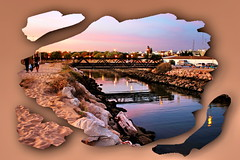 Cortes e recortes (Zéza Lemos) Tags: rio praia algarve água areia aves ave portugal pontes pordesol puestadelsol sunset vilamoura