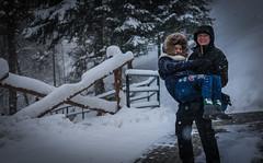 Among the snow (Carl Terlak) Tags: snow sony apsc exposure