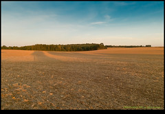 180910-9025-XM1.JPG (hopeless128) Tags: 2018 fields sky eurotrip trees france nanteuilenvallée charente fr