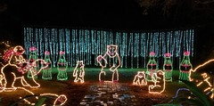 Bellingrath Magic Christmas in Lights (ciscoaguilar) Tags: alabama christmas theodore bellingrath lights