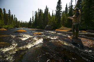 Newfoundland Caribou Hunt, Moose & Bear Hunting 50