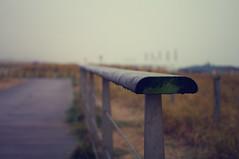 Fence on a Dune (J a n W i l l e m) Tags: fence hff fencefriday dune sea beach shore katwijk pentax k7 35mm