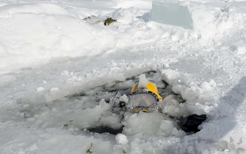 A Diver surfaces during diving training on a frozen lake.