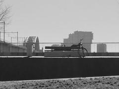 #urbanphotography #urbanjungle #blackandwhite #blackandwhitephoto #blackandwhitephotography #nijmegen #thenetherlands #skyline (LaMarianne82) Tags: urbanphotography urbanjungle blackandwhite blackandwhitephoto blackandwhitephotography nijmegen thenetherlands skyline