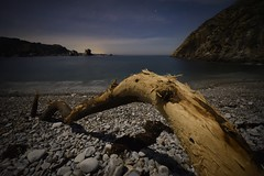 Wood in silence (Daniel Feito Fotografia) Tags: cudillero nikon asturias playadelsilencio estrellas beach playa mar sea focusstacking longexposure landscape nightscape night