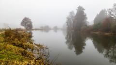 Waverley Abbey (THE NUTTY PHOTOGRAPHER) Tags: waverleyabbey mistymorning mist lake trees wetreflection reflections