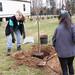 Newell_Elem_Tree_Planting_2019  (79)