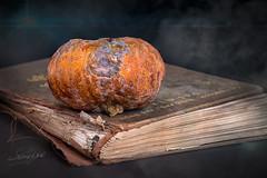 Without books, the imagination dies. (TS Lichtreise) Tags: makro macro book buch star stern old kürbis pumpkin nebel fog broken stillleben still life past orange forget