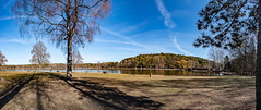 Dechsendorfer Weiher - Schatten 2723 (Peter Goll thx for +12.000.000 views) Tags: pond erlangen schatten shadow baum dechsendorfweiher dechsendorf nature himmel giesberg sky birke lake 2019 natur panorama bayern deutschland de