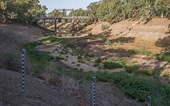 Not much to gauge (OzzRod) Tags: pentax k1 hdpentaxdfa2470mmf28 darlingriver wilcannia roadbridge heritage dry waterhole drought gauging poles monitoring savethedarling