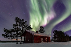 Aurora Borealis (oleadam) Tags: auroraborealis northernlights arctic lapland finland travel nighttimephotography