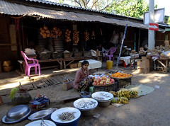 Selling fish at the Mani Sithu market in Nyaung U, Myanmar (Claire Backhouse) Tags: bagan myanmar burma burmese fish fishmonger market markets organic fresh fruit vegetables shade bored work working people streetphotography asia asian southeastasia agriculture horticulture fishing