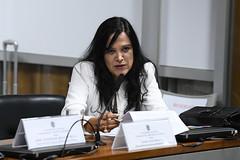 CCS - Conselho de Comunicação Social (Senado Federal) Tags: ccs reunião mariajosébraga brasília df brasil bra