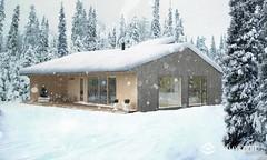 A2. Erillistalo_Exterior-1_winter_2048