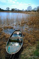 Lac de Madine, Meuse (jpto_55) Tags: lac lacdemadine meuse lorraine france xt20 fuji fujifilm voigtlander15mmf45superwideheliarii voigtlanderlens