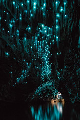 zBWR_07 (mapwn6@sbcglobal.net) Tags: glowworm glowwormcave glowwormphotography ruakuricave shaunjeffers shaunjeffersphotographer shaunjeffersphotography waitomocaves